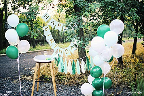 ZZIIEE Birthday Party Decorations Kit, Green Happy Birthday Banner, Paper Tassel Garland, Multicolor Balloons, Paper Pom Pom Color Tissue Flowers, Birthday Party Supplies for Women Men and Kids.