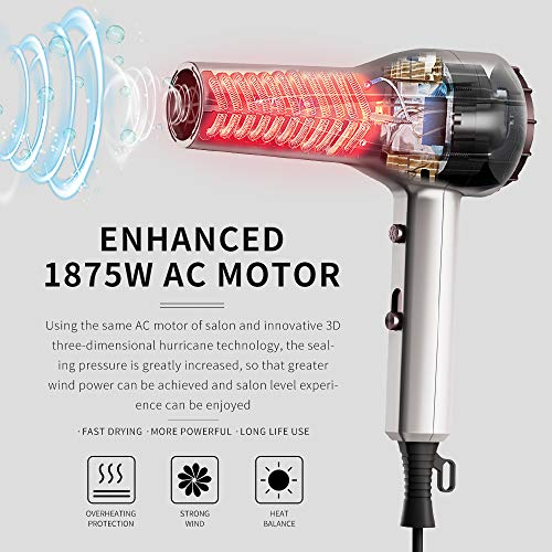 1875W Professional Salon Hair Dryer,Negative Ionic Blow Dryer for Fast Drying,with 3 Heat Settings, 2 Speed & One Cool Settings,AC Motor with Diffuser, 2 Concentrator Nozzlesd (Mirror Silver)
