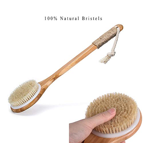 Dry Bath Body Brush Back Scrubber with Anti-slip Long Wooden Handle, 100% Natural Bristles Body Massager, Perfect for Exfoliating, Detox and Cellulite, Blood Circulation, Good for Health and Beauty