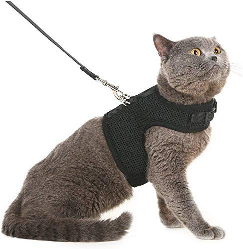 CHUKCHI Escape Proof Cat Harness and Leash for Walking Car Seat Belt Adjustable Soft Mesh Holster Style - Best for Kitten Cats Kitten Puppy Rabbit