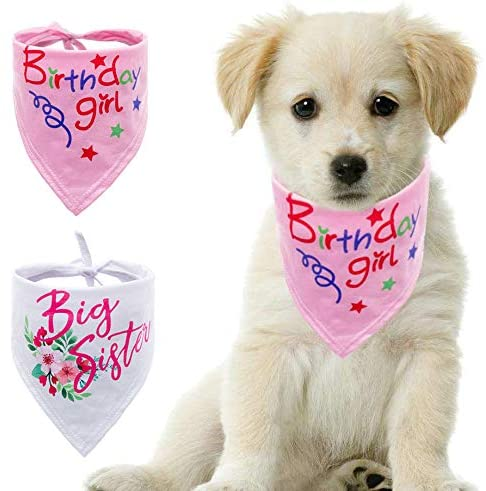 DAIXI Dog Bandana,Cotton Bandanas Handkerchiefs Scarfs Triangle Bibs Accessories,Gender Reveal Photo Prop,Pet Scarves for Dog Lovers