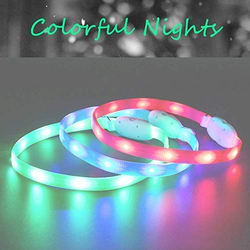 DAIXI Dog Collar with LED Light,USB Charging Pet Night Light Circle Collar Anti-Lost can be Traction