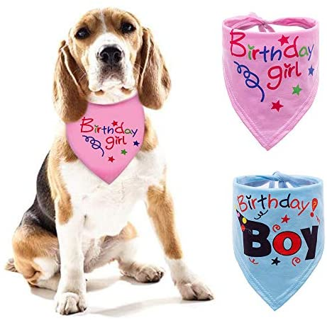 CHUKCHI Dog Bandana -2 PCS Big Sister Dog Bandana Triangle Bibs Scarf Accessories for Dogs Pets Cat
