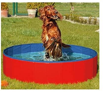 N&M Products Foldable Dog Pool - Folding Dog/Cat Bath Tub - Collapsible Pet Spa