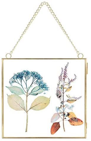 FunPa Brass Hanging Photo Frame,DIY Artwork Display Frame for Dried Plant Specimen Pressed Flowers, Dried Flowers, Double Glass, Glass Frame only (Golden)